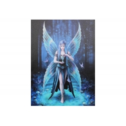 Enchantment Canvas Print (Anne Stokes)