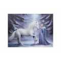 Pure Magic Canvas Print (Anne Stokes)