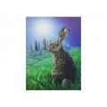 Solstice Canvas Print (Lisa Parker)