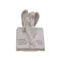 Stone Angel on Memorial Message Book
