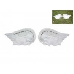 White Angel Wings with Cherub & Message