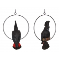Black Cockatoo in Hanging Metal Ring (Large)