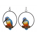 Kingfisher Bird in Hanging Metal Ring