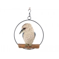 Kookaburra in Hanging Metal Ring