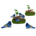 Blue Wrens & Garden Display Pack