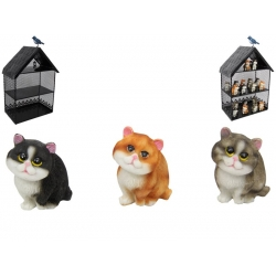 Cats & Metal House Display Pack