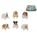 Cute Puppies & Dog Bed Display Pack