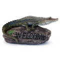 Crocodile Welcome