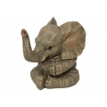 Elephant Baby Clapping