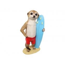 Meerkat Surfer in Boardies