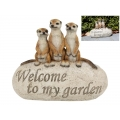 "Meerkats on Rock with ""Welcome"" Message"
