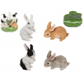 Cute Rabbits & Garden Base Display Pack