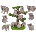 Baby Koalas on Tree Display Pack