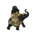 Gold Wise Buddha on Asian Elephant