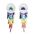 Peacock Feathers Colourful Dream Catcher