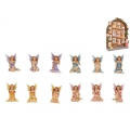 Fairies & Fairy House Display Pack