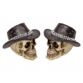 Skull with Studded Cowboy Hat