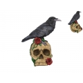 Black Crow on Skull with Red Roses
