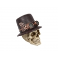 Steampunk Skull in Hat & Goggles