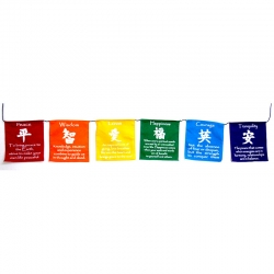 Chinese Lucky Symbols Prayer Flags on Rope (Small)