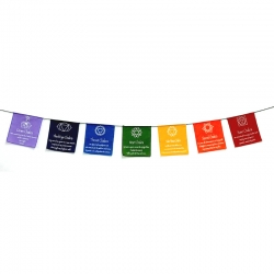 Chinese 7 Chakra Symbols Prayer Flags on Rope (Small)