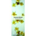 Frangipani - 40Gm Incense
