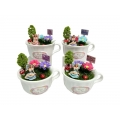 Fairy Garden Miniatures in Tea Cup