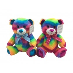 Plush Rainbow Colour Teddy Bear