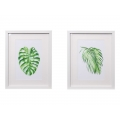 Fern Design Framed Canvas Print