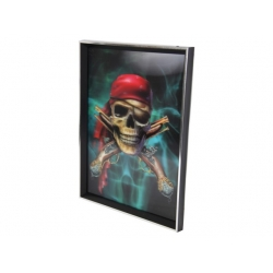 3D Pirate Skull Plaque with Frame