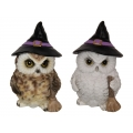 Witch Owl with Broomstick